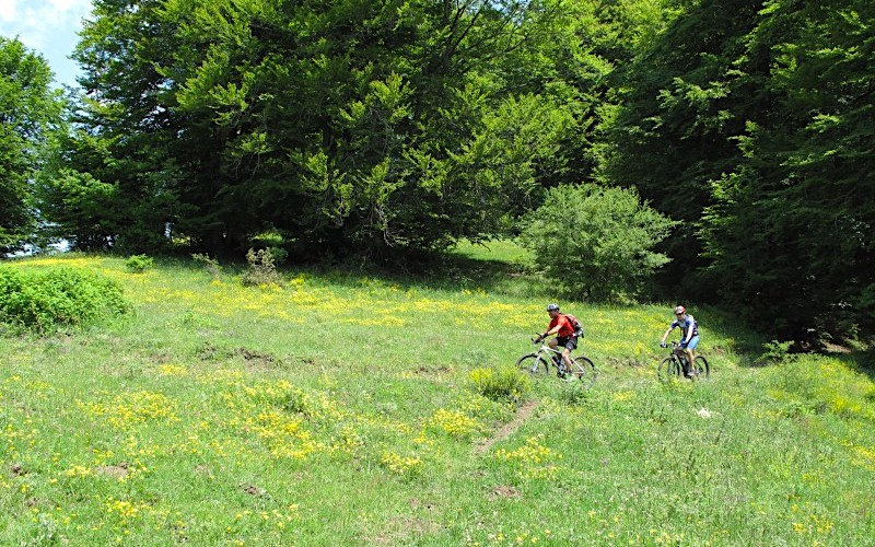 Mountain bike, Basilicata